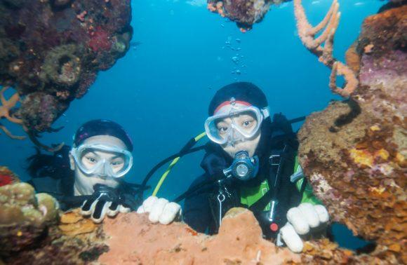 Scuba Diving Tour